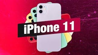 iPhone 11 первый взгляд
