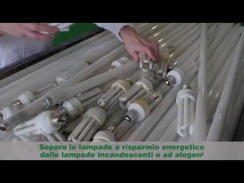 Plafoniere Neon Usate : Riciclo lampade usate sul territorio nazionale ecolamp
