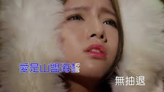 陳雷-愛的情火