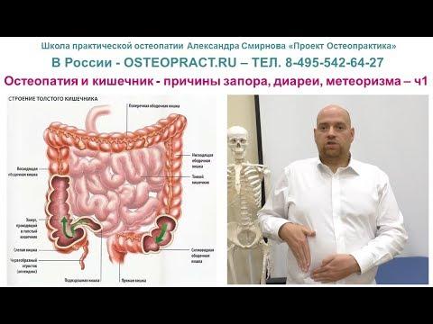 Остеопатия и кишечник - причины запора, диареи, метеоризма – ч.1