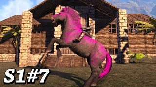 FINISHING THE STABLES + MORE EQUUS COLOR MUTATIONS Ark Survival Evolved The  Center Map Gameplay Ep7
