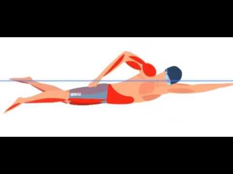 Видео упражнение убрать жир с живота