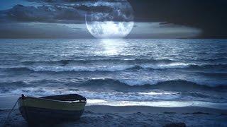 Sonidos de la Naturaleza - Sonido del Mar y del Bosque: Dormir y Calmar la Mente