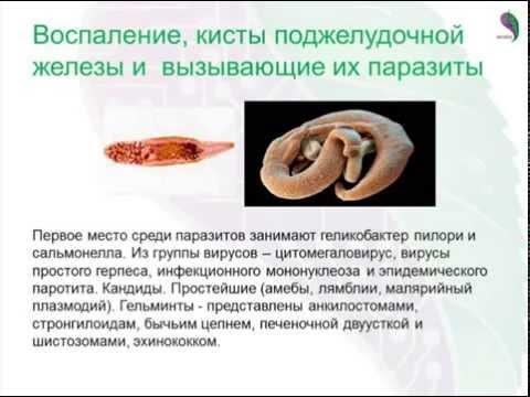 Самое эффективное лечение от цирроза печени