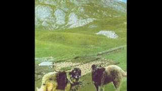 "Macedonian Folk Song ""Se navali Shar Planina"""