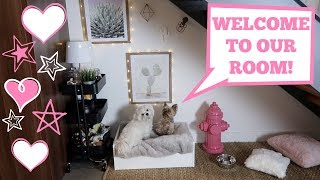 Building My Dogs A Room Under The Stairs | Teddy & Mochis Official Room Tour!