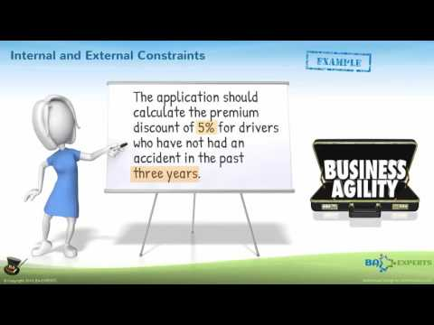 Business Rules, Business Policies, and External Constraints