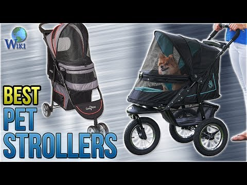 10 Best Pet Strollers 2018