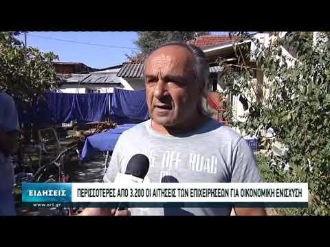 Συνεχίζεται η καταγραφή των ζημιών στην Καρδίτσα | 13/10/20 | ΕΡΤ