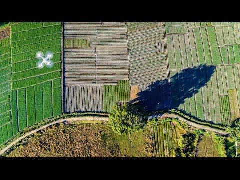 O rural na era digital
