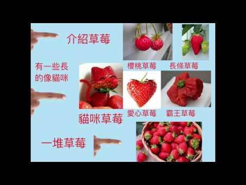 新竹縣_東安國小_陳淑惠_教學影片