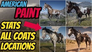 Red Dead Redemption 2 American Paint   LOCATION & ALL COATS & STATS  GOOD HORSE GUIDE