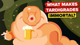 What Makes Tardigrades Immortal?