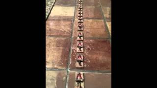 Victor Mouse Trap domino affect