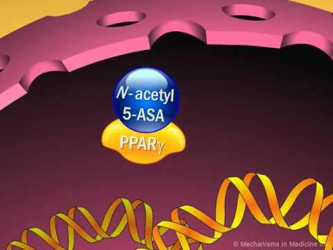 Hepatitis és prosztatagyulladás