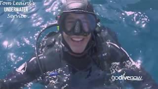 Go Dive Now Reasons to Scuba Dive