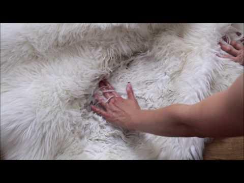 Dreckigen Kunstfellteppich Fellimitat richtig reinigen, waschen und pflege