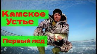 Рыбалка камское устье 2019 год татарстан