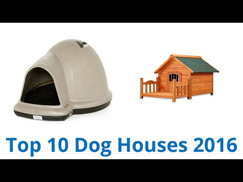 10 Best Dog Houses 2016