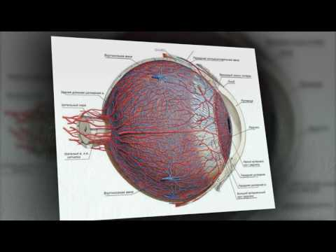 Очки для зрения части