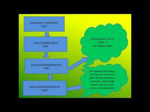 LEZIONE SUGLI ACIDI GRASSI ESSENZIALI OMEGA 3 E 6.wmv