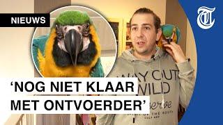 Ontvoerde papegaai weer thuis: 'Dit kan gewoon niet!'