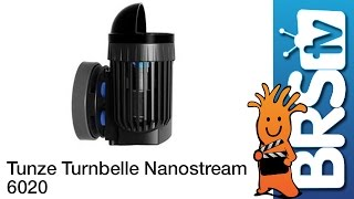Tunze Turbelle Nanostream 6020 Flow Dynamics