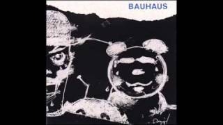 BAUHAUS ~ Poison Pen (Monkey)