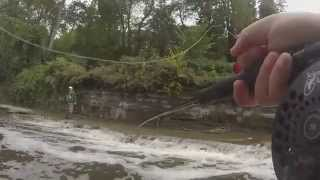 preview picture of video 'Steelhead Fishing Walnut Creek Erie Pa 10-4-2014'