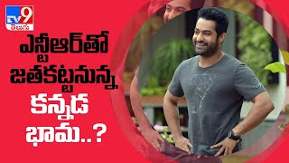Rashmika Mandanna and Jr NTR to pair up for Trivikram's next film - TV9