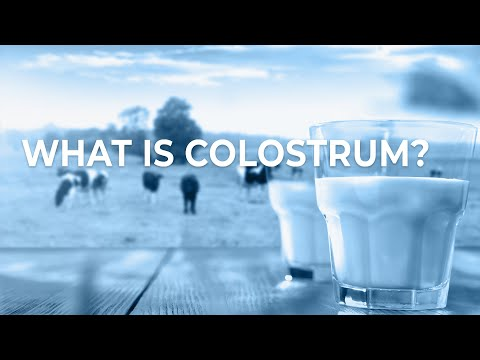 New Image International - Smoothie: What is Colostrum