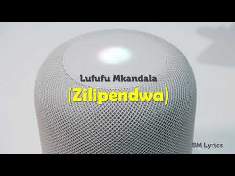 Download Wcb Wasafi Zilipendwa Lyrics Video 3GP Mp4 FLV HD