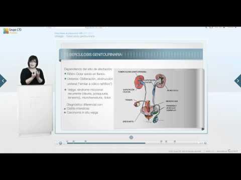Prostatatumorantigen-