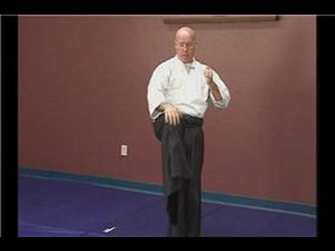 Intermediate Aikido Striking Tips : Aikido Striking Tips: Front Kick