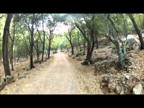 Foreros Atletas de Baleares: Entreno de montaña Valldemossa.