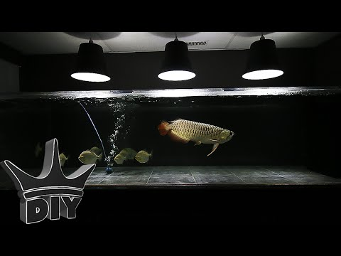 HOW TO: EASY $7 DIY AQUARIUM LIGHT – pendant style