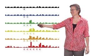Rachel Green (Johns Hopkins U., HHMI) 2: Protein synthesis: mRNA surveillance by the ribosome