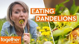 Is Eating Dandelions Good For You? | Super Foods: The Real Story