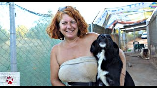 A woman's dream of a safe dog haven - one of Greece's biggest shelters | DASH