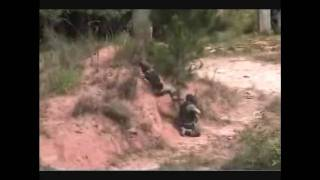 Paintball – Batalha de Gutusa – 2010