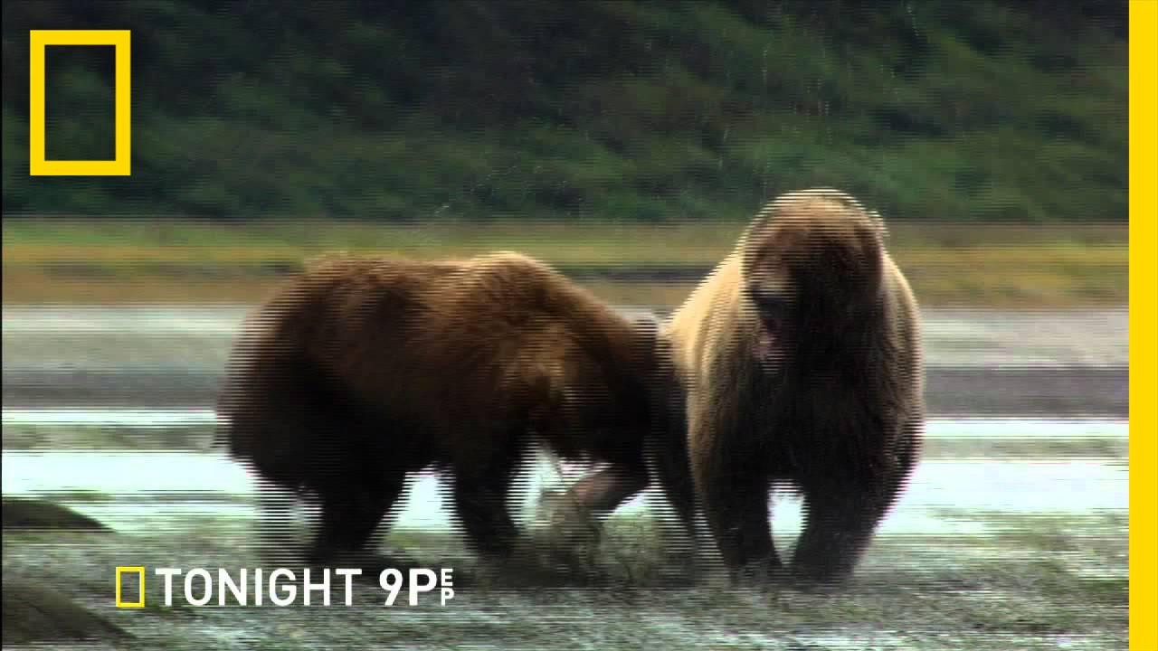 Alaska State Troopers thumbnail