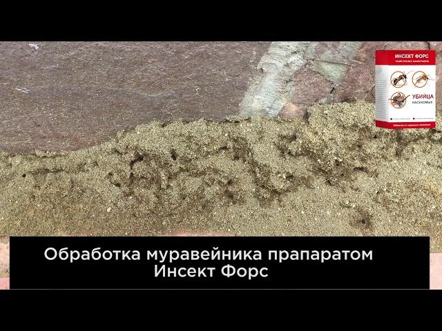 Видео Инсект Форс