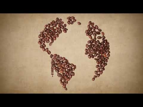 10 PRINCIPLES OF FAIR TRADE - as told by coffee beans!