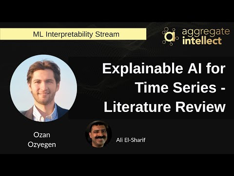 Explainable AI for Time Series - Literature Review
