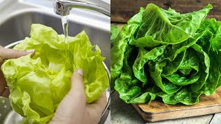 How to Keep Lettuce Fresh | Salad Meal Prep for the Week
