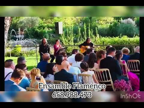 Ceremonia Civil Ensamble Flamenco