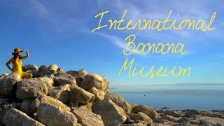 Wander List ~ The International Banana Museum is a Treat for all Ages