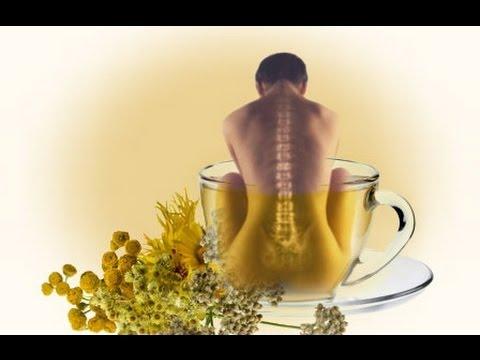 Болит спина в области поясницы от сидячей работы