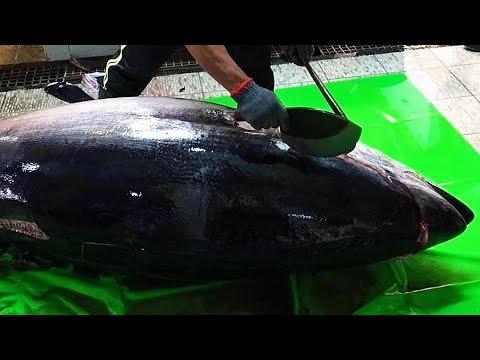 [661 lb] GIANT BLUEFIN TUNA CUTTING / 300KG - Donggang Fishing Port Market ,Taiwan