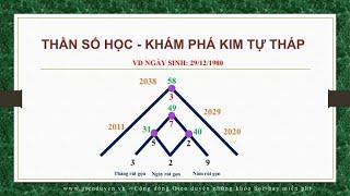 Phần 5: Thần số học - Kim Tự tháp - Peak Years - Những năm hội tụ năng lượng của bạn